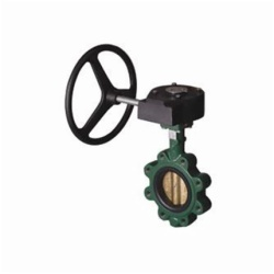 Resilient Seated Butterfly Valves1